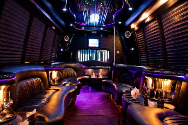 15 Person Party Bus Rental Carrollton
